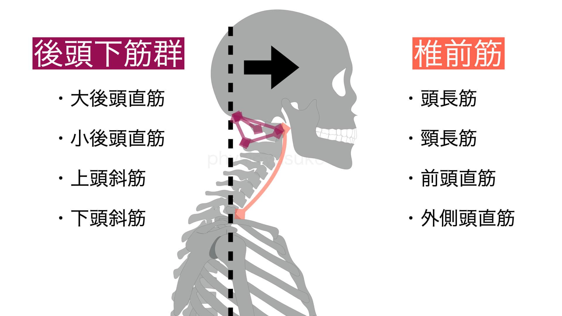 後ろ が の 痛い 首